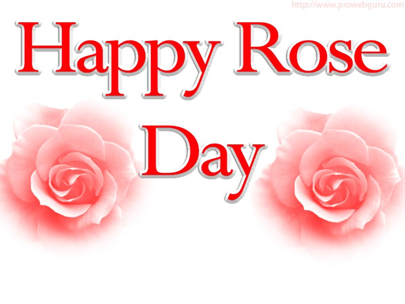 Happy Rose Day Pictures, Happy Rose Day Images, Happy Rose Day Wallpapers, Valentine Week Rose Day Images 2015